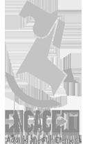logo-engage-it